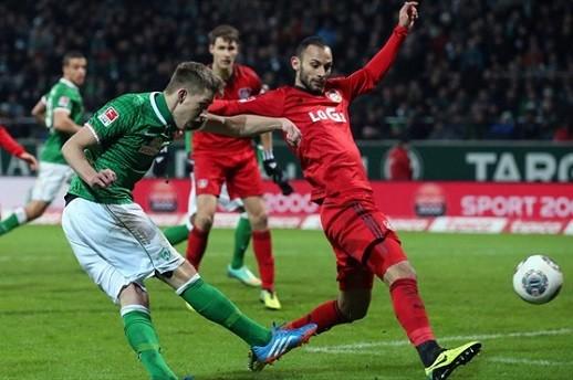 Bayer-Werder_big
